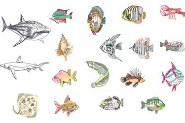 Sea Fish Drawings Dwg Download