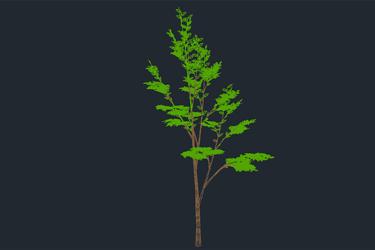 Tree 3D Dwg Download