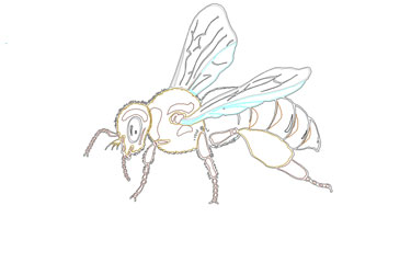 Bees Dwg Drawing