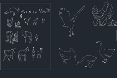 Different Animals Cad Blocks