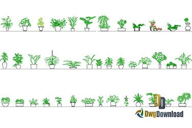 Plants Cads Blocks Dwg Download
