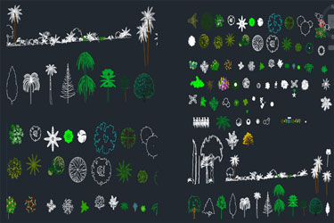 Vegetation Cad Blocks